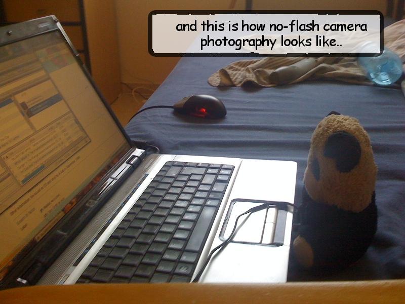 no flash no photograph